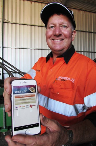 Richard Konzag uses MouseAlert to record local mouse abundance data. Image GRDC